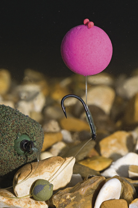 how to catch carp on boilies