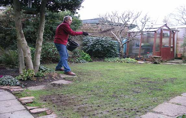 spring lawn care tips amateur gardening. Black Bedroom Furniture Sets. Home Design Ideas