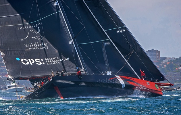 sydney to hobart live betting sports - photo#11