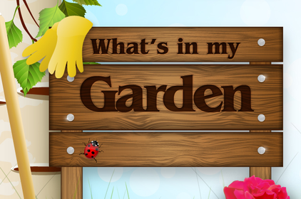 Garden_splash_screen