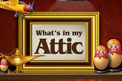 Productitem_attic_im-2015
