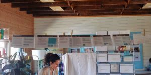 A clothesline hung across the room with tabloid sized papers hanging, each depicting the parts of a single idea.