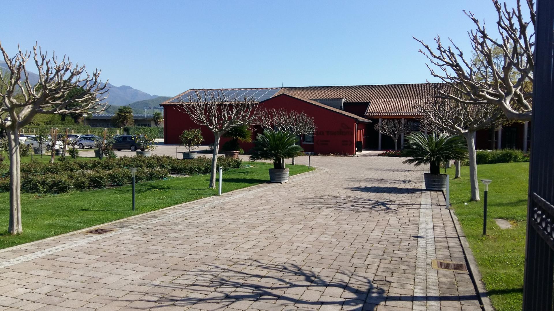 Lavori di ripristino presso Cantina La Tordera - Valdobbiadene (TV)