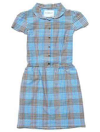 dresses-the-retro-work-dress-women-s-1
