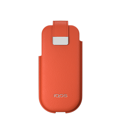 leather pouch orange.png