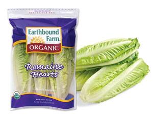 earthbound_farms