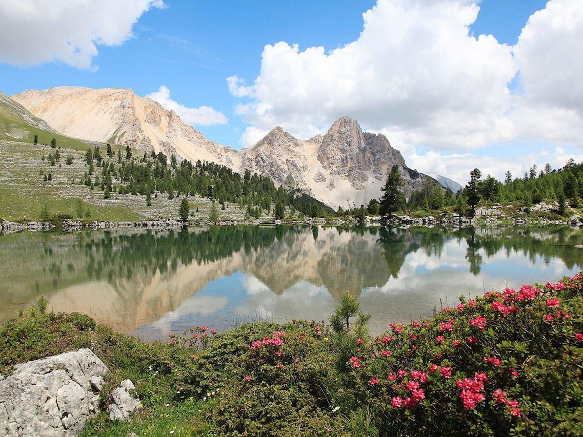 Alpine Mountain Chalet 5 - Holiday in San Virgilio/Kronplatz