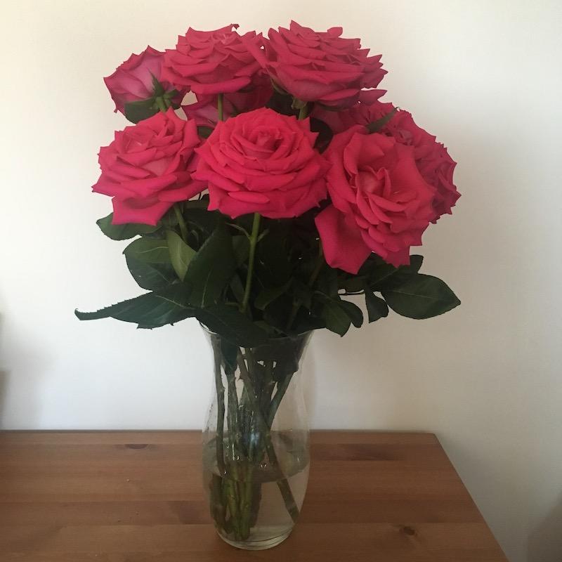 tw-roses-feb1