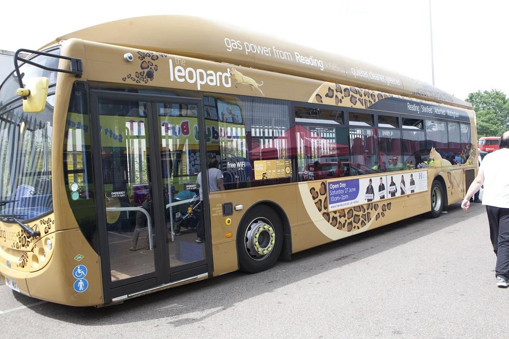 Leopard-buses-_140318