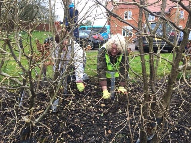 Rotarians-planting-saplings-at--Bluebells-resized