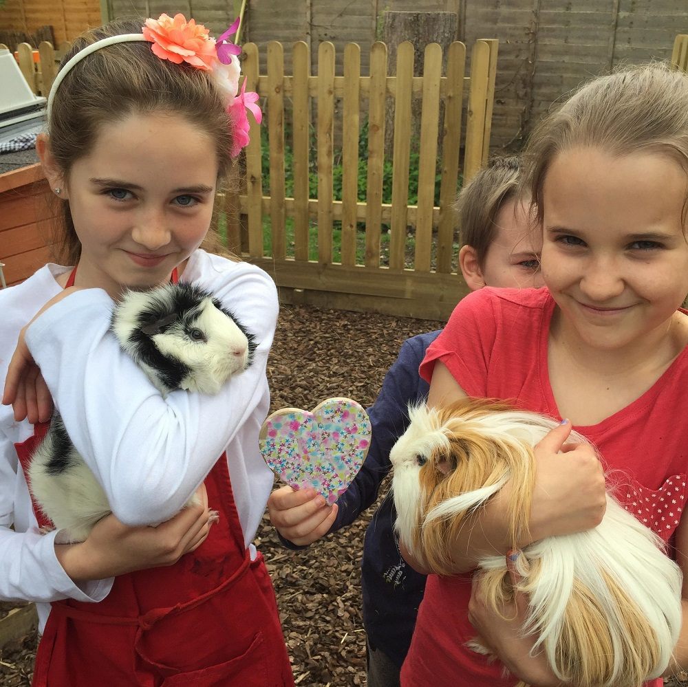 Guinea-pig-wedding-_110518--1-