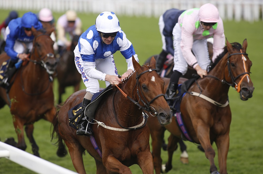 Royal-Ascot-Horses-_300518