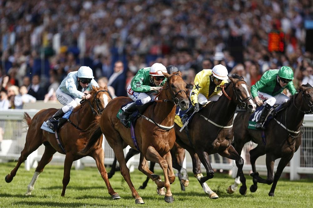 Horse Racing Terminology Uk
