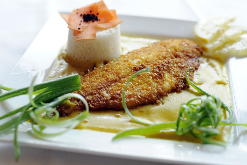 Fish-Tav-Gard-_260618