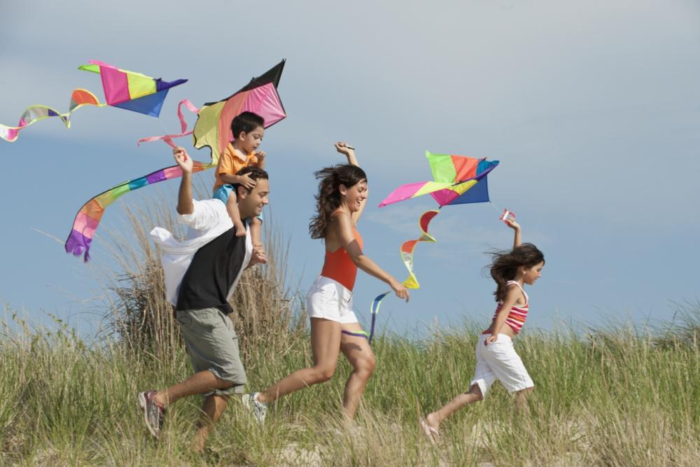 Makar Sankranti - Kite Festival   List of festivals in India