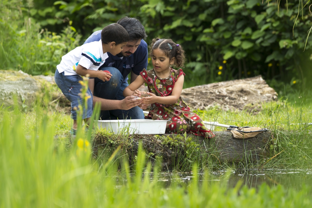 pond-dipping-_030718