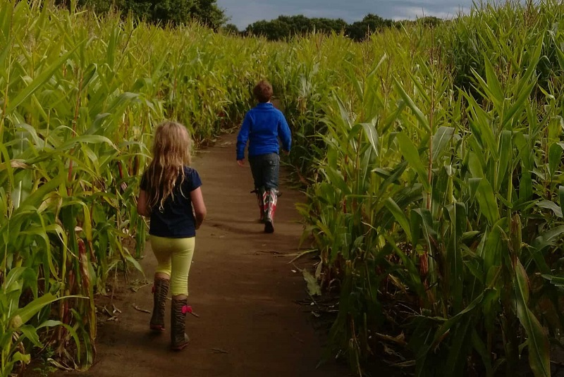 The-x-best-things-to-do-with-your-kids-in-Yorkshire--1-