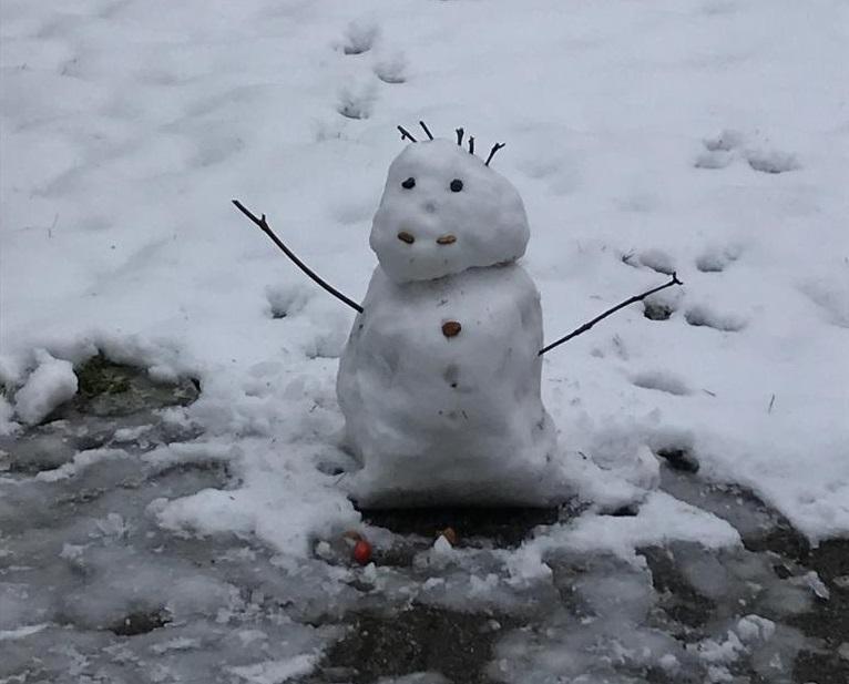 snowmanLT010219
