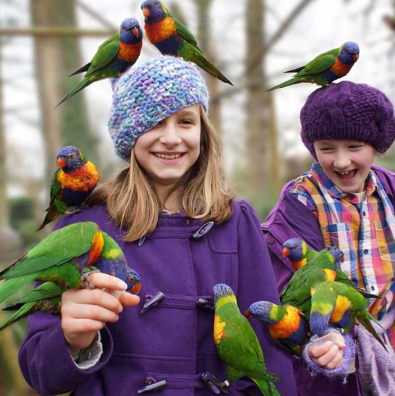 best-things-to-do-with-your-kids-in-Wiltshire-1