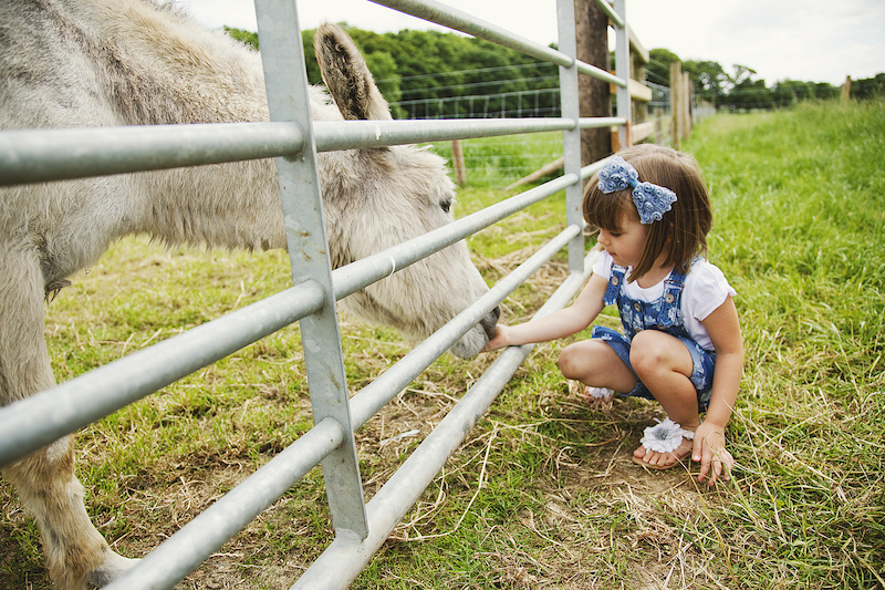 best-things-to-do-with-your-kids-in-Derbyshire-2