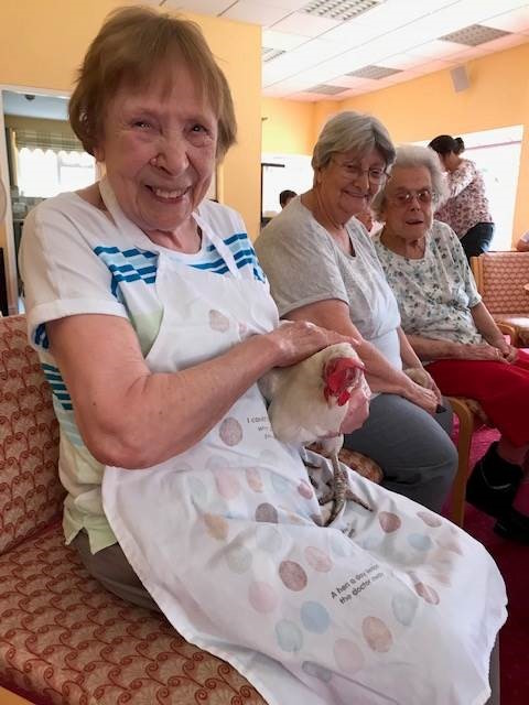 Darlington-tackles-dementia-with-hens--creativity-and-heritage3