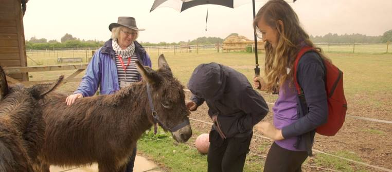 Delightful-donkey-walk-for-one-lucky-71-year-old-from-East-Grinstead-1