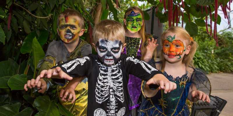 Best-places-to-celebrate-Halloween-with-your-kids-in-the-UK-4