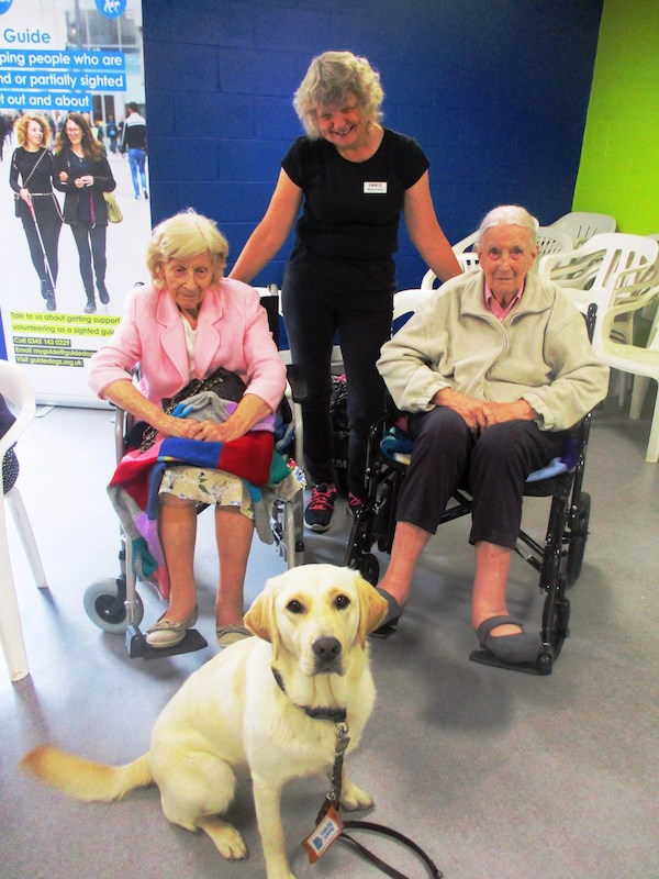 Warwickshire-residents-spent-a-pawsome-afternoon-with-guide-dog-pups