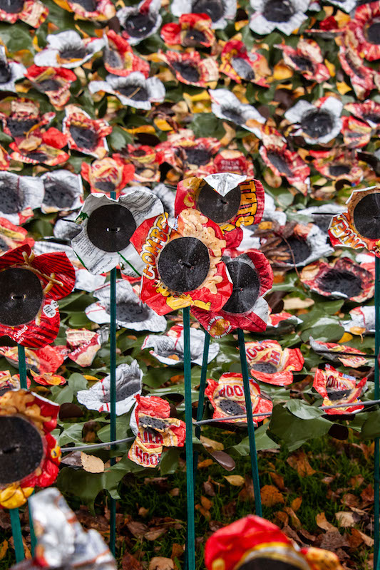 Spectacular-poppy-display-by-primary-schoolers-in-Nottingham-1