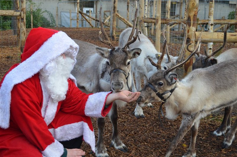 The-best-Christmas-Grottos-where-you-can-meet-Santa-in-the-South-9