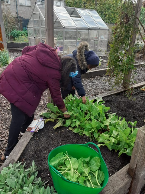 Tower-Hamlets-Primary-School-hires-gardener-to-teach-sustainability