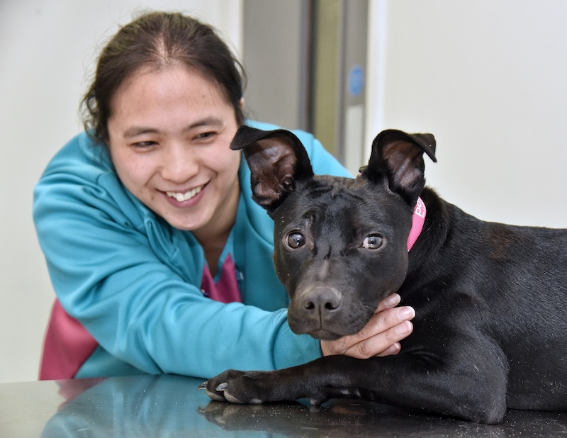 Trainee-vet-care-assistant-adopts-puppy-she-helped-save-2