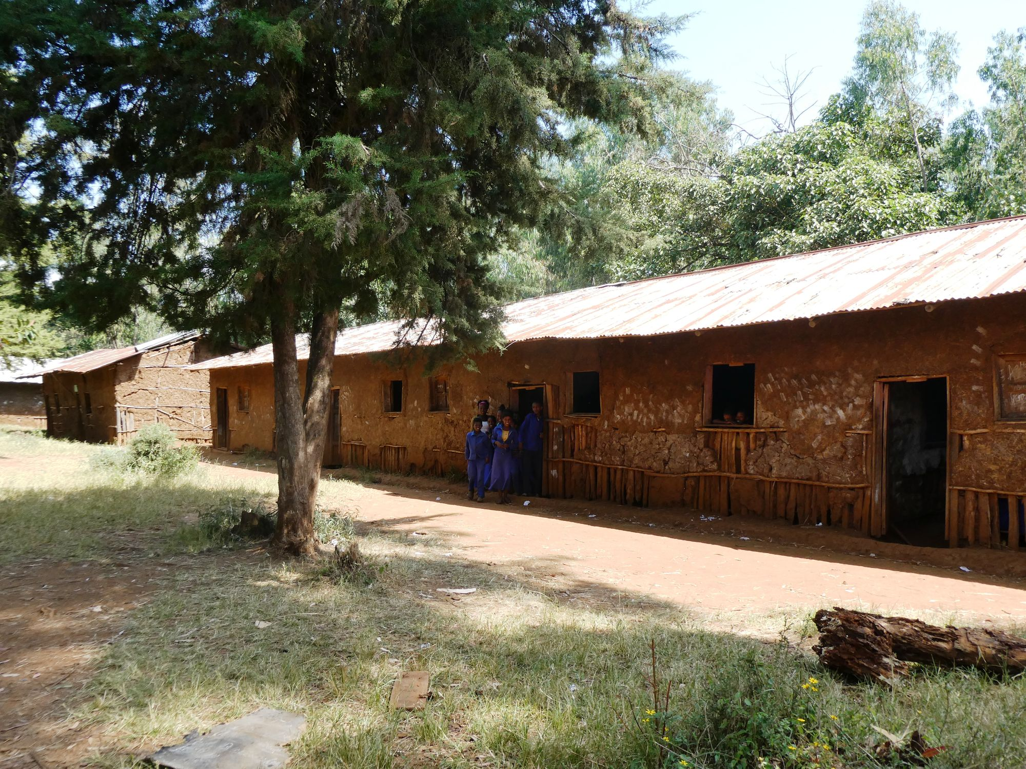 Exeter charity receives UK Aid funding for Ethiopian schools