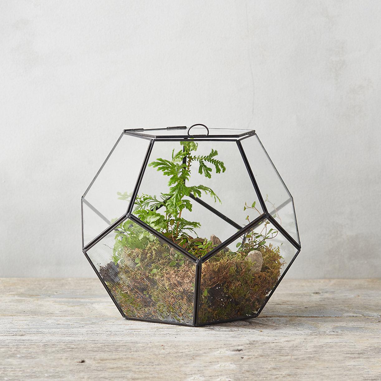 student-housing-terrarium-build-guide