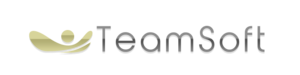 Teamsoft Srl