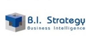 B.I. Strategy Srl