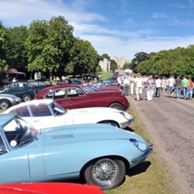 Windsor Jaguar Display Image