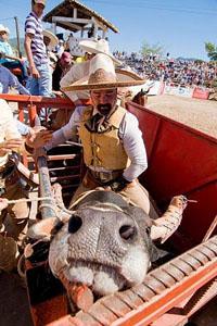 rodeo_29572_600x450