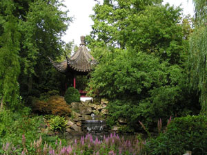 Chinese Garden in Blijdorp Zoo