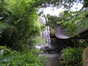 Waterfall in Blijdorp Zoo