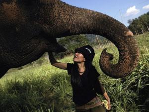 elephant-nature-park_10827_600x450