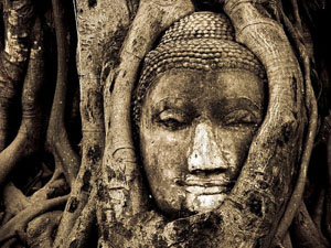 head-of-buddha_10794_600x450