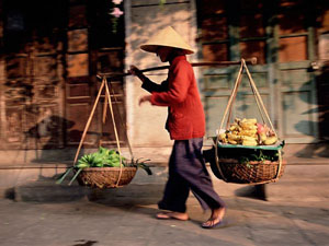 woman-carrrying-fruit-and-vegetables_11389_600x450