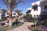 DIVE-INN-SHARM-EL-SHEIKH