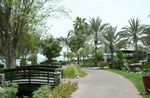 JEBEL-ALI-GOLF-RESORT-AND-SPA-JEBEL-ALI-18