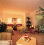 Hotel-LION-ISTANBUL-TURCIA