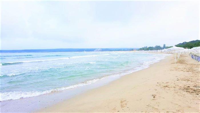 FOREST BEACH 6