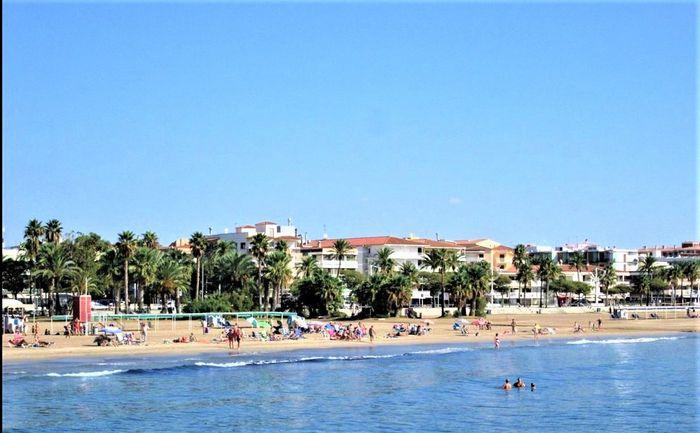 OLIMAR II SPANIA