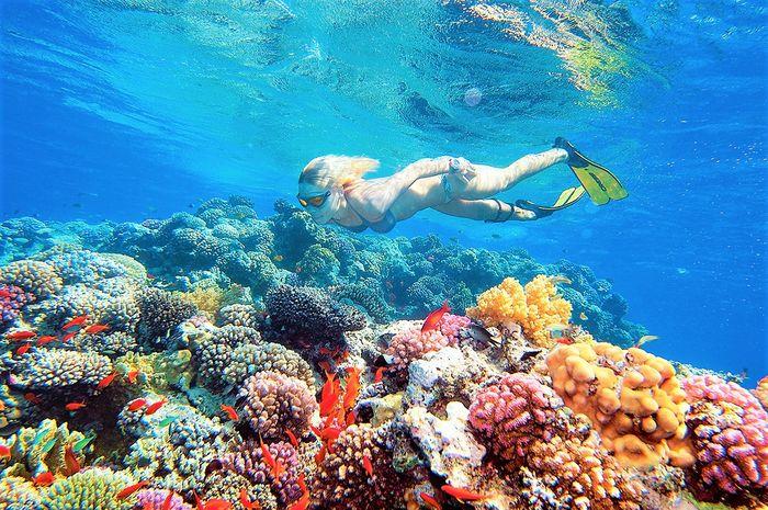 STELLA DI MARE BEACH RESORT & SPA 8