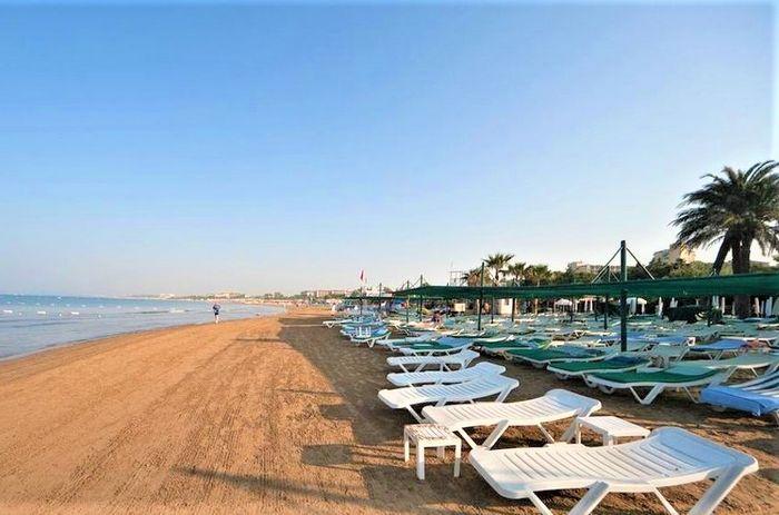 TRENDY PALM BEACH 7